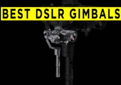 Best Camera Gimbal Stabilizers For Mirrorless & DSLR